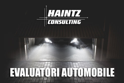 Evaluatori automobile - Haintz
